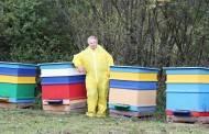 """""""Uodo įkandimas man skaudesnis nei bitės"""""""
