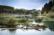 Keliaudami Lietuvos upėmis tyrė jų švarumą