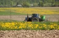 Prasidėjo žemės ūkio naudmenų ir pasėlių deklaravimas