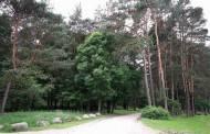 Apie privalomuosius atskaitymus, bendrąsias miškų ūkio reikmes ir miško kelių remontą