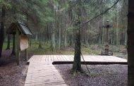 Lėno miške nutiestas ąžuolinis takas