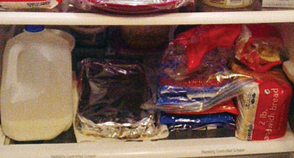 """""""Šaldytuvų"""" ligos – jersiniozės – pernai užregistruota daugiau"""