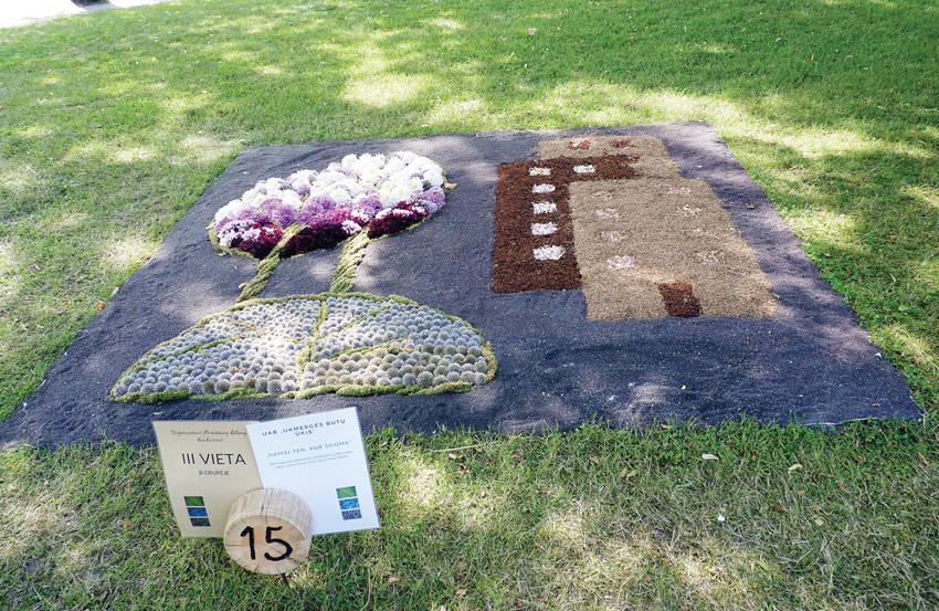 Anykščių šventei kilimą iš žolynų audė ir ukmergiškė