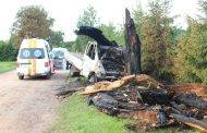Po smūgio medis nulūžo, o automobilis užsiliepsnojo