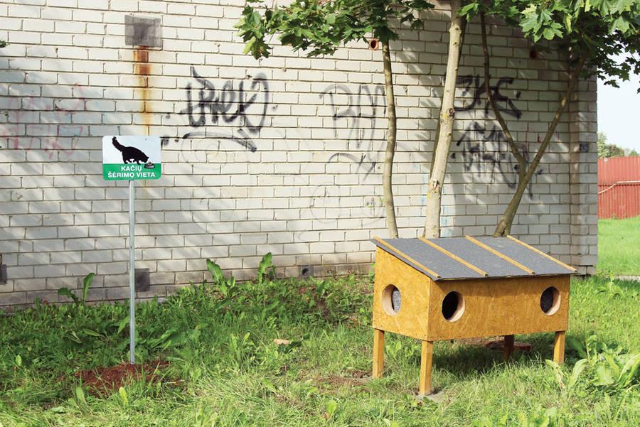 Ir Ukmergėje statomi kačių nameliai-šėryklos
