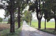 Kelyje į Leonpolį - retas sprendimas