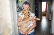 Šuns vagystė Vepriuose: dviskirtingos versijos